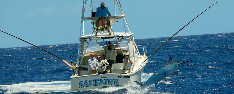 Game fishing boat Saltaire heading out to the Great Barrier Reef
