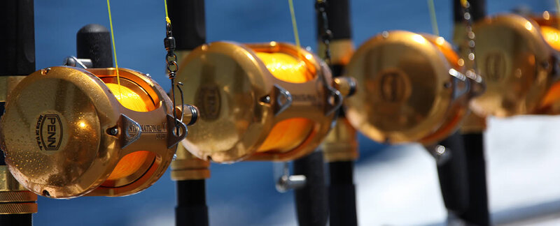 Sparkling gold game fishing gear